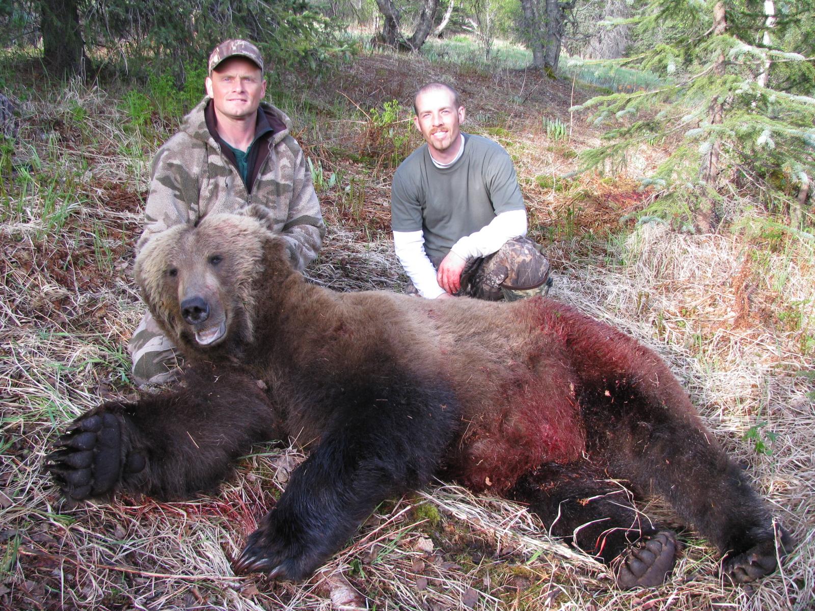 является самые большие медведи в мире фото порода меню