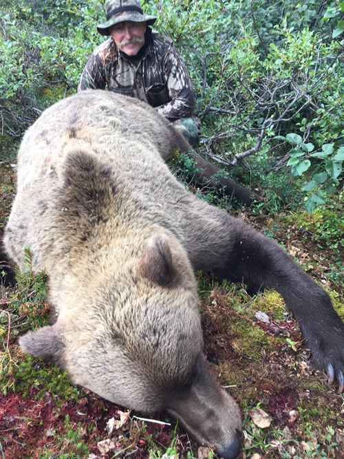 Grizzly Bear Hunt Alaska with Jake Jefferson
