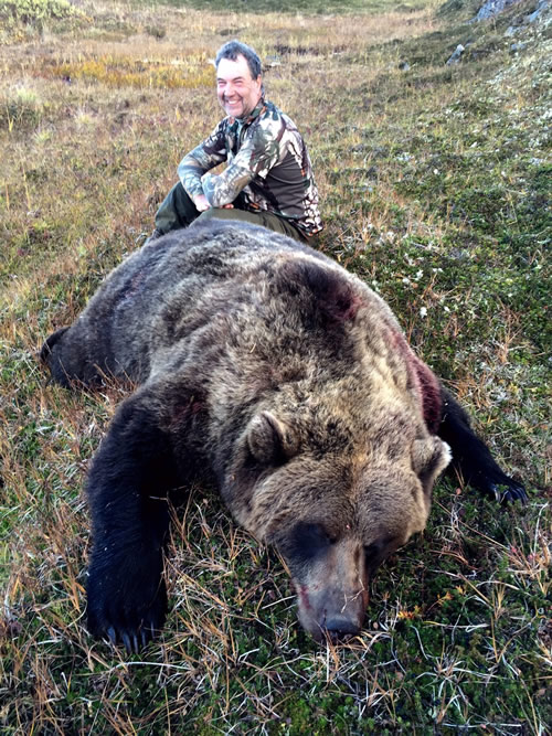 Alaska Black Bear Grizzly Hunt